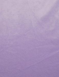 Lovely Lavender 1